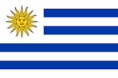 16.- ADDIP - NACIONAL URUGUAY - MIEMBRO PLENO CIDI - PRESIDENCIA REGIÓN SUDAMÉRICA CONO SUR