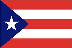 11.- CODDI - NACIONAL PUERTO RICO - MIEMBRO PLENO CIDI - DECANO COLEGIOS IBEROAMÉRICA