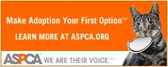 Join me & support the ASPCA!