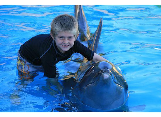 [ben+hugging+dolphin.htm]