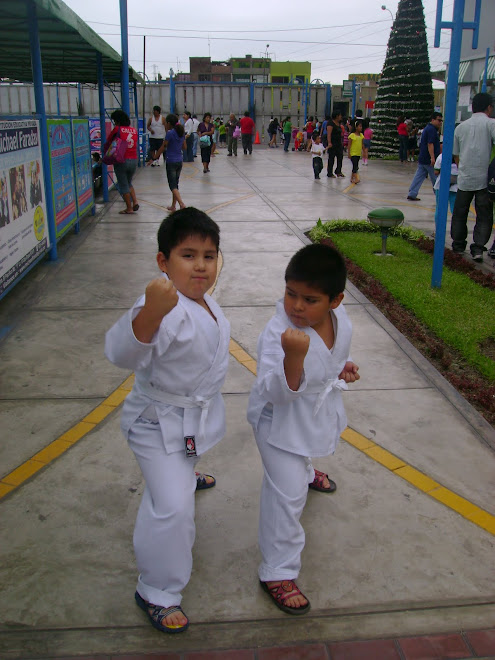 CARLOS FERNANDO Y JOSE EDUARDO. THE CASTRO BROTHERS NEW GENERATION