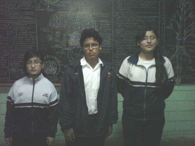 V OLIMPIADA PERUANA DE BIOLOGIA 2010 Y XV OLIMPIADA PERUANA QUIMICA 2010