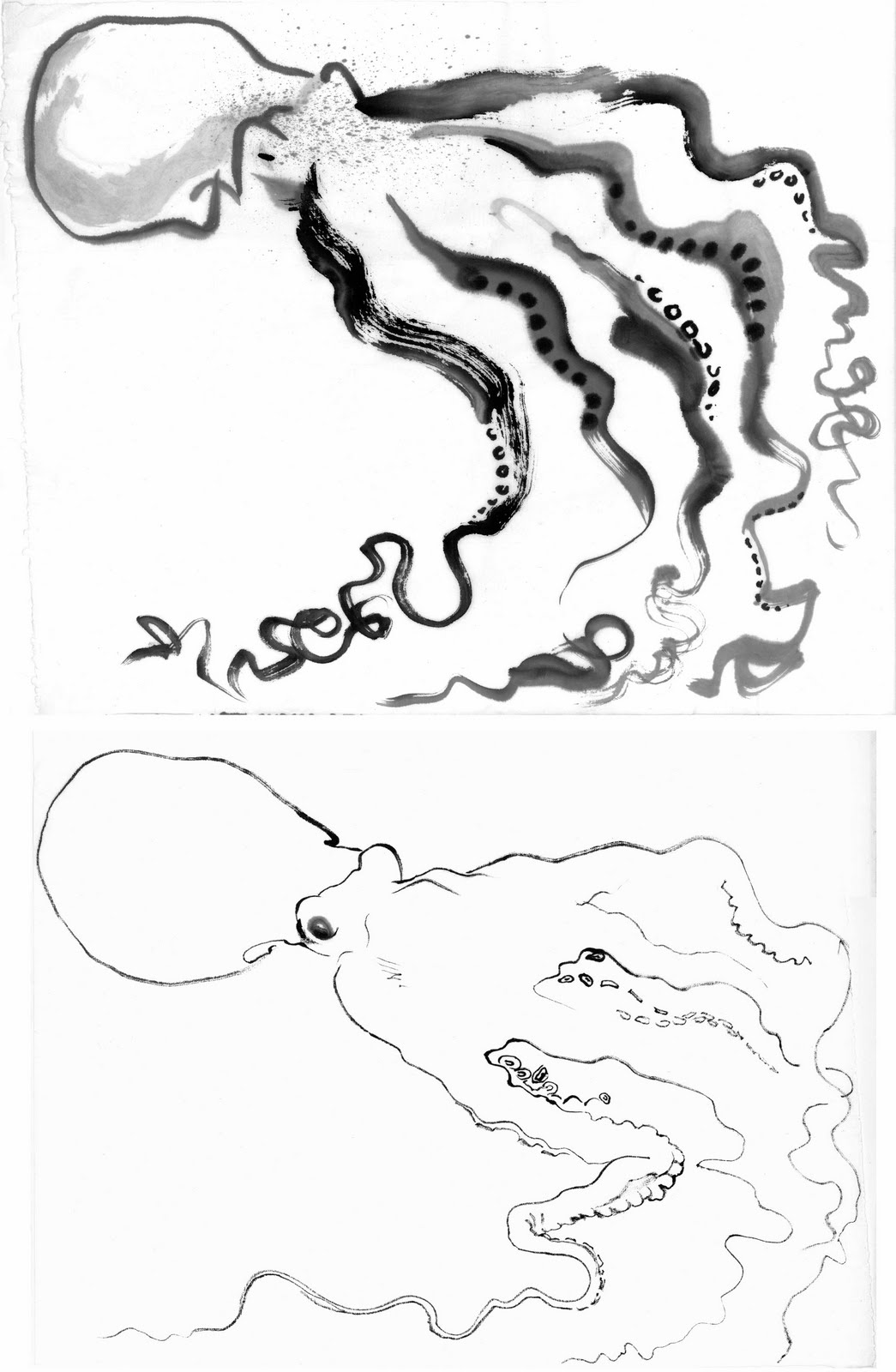 drawings of octopuses