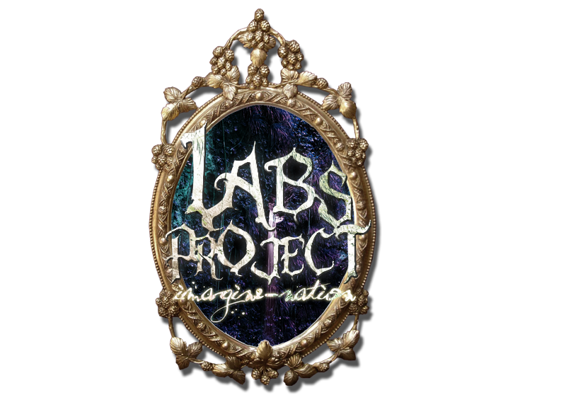 Labs Project 2011