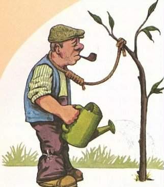 "Veja o blog ""S.O.S Natureza piancó""."