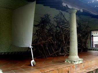 El Fantasma del Bosque 1