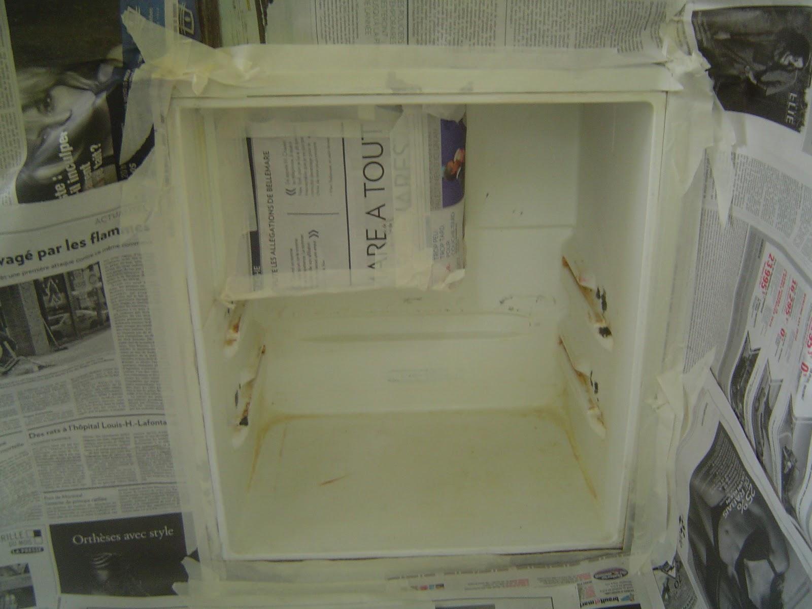 la coquille cure de jouvence pour frigo. Black Bedroom Furniture Sets. Home Design Ideas