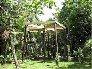 Photo of the platform for a treehouse