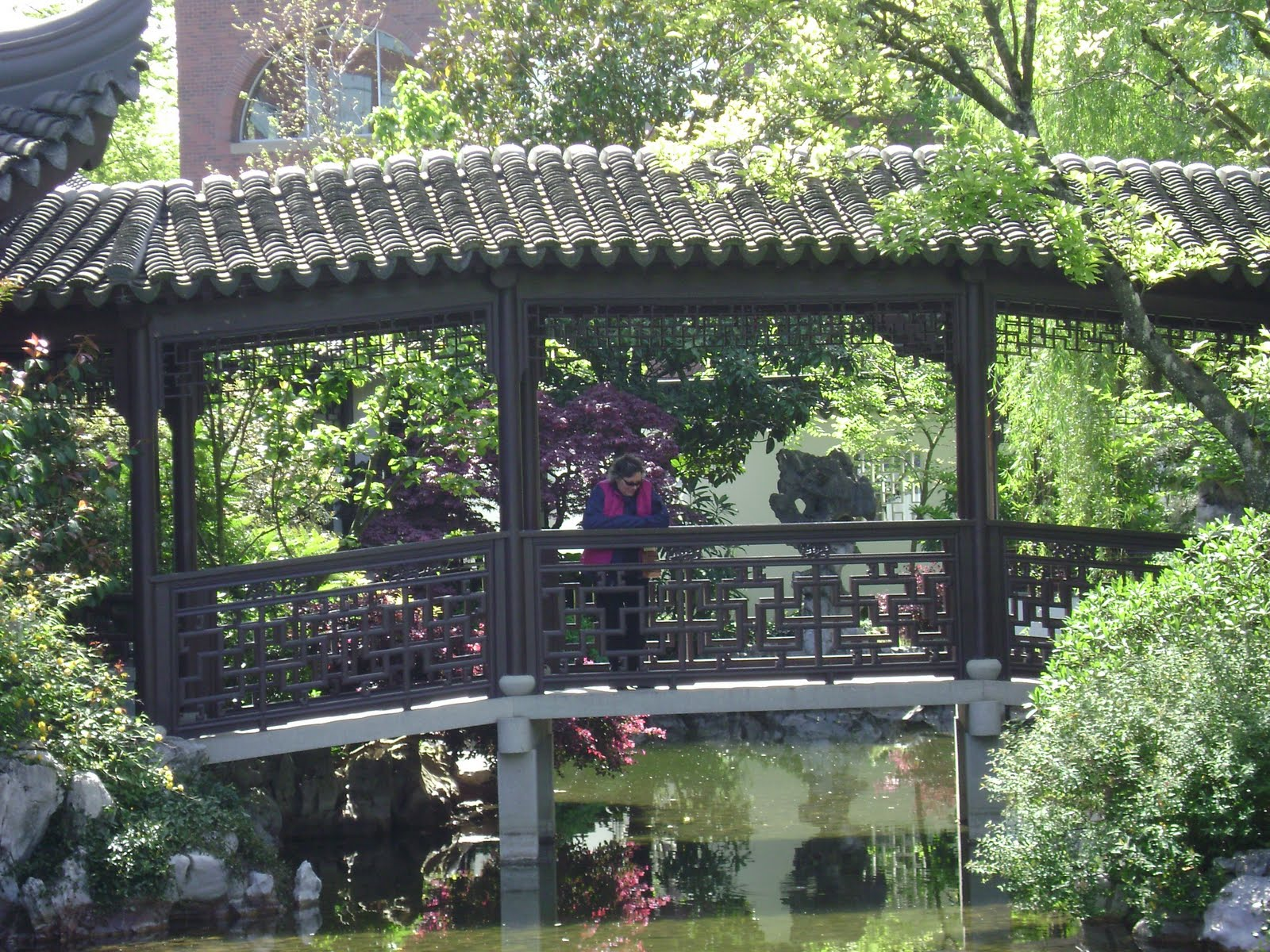 the Japanese Garden during