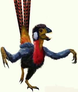 Resultado de imagem para Era um dinossauro com penas assimétricas. Saberia já voar?