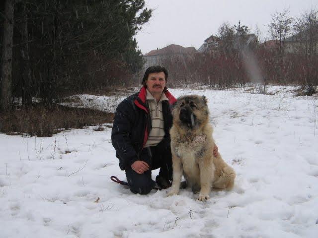 Furia iz Legendy Kavkaza