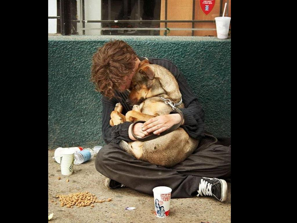 Picture Of Homeless Man Hugging Dog