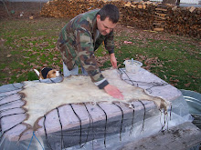 Brain Tanning One of the Deer Hides