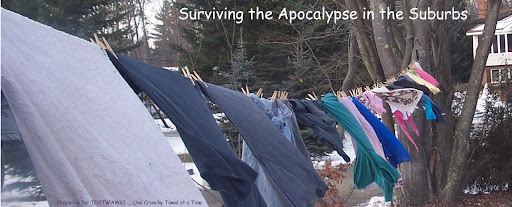 Surviving the Apocalypse ... in the Suburbs