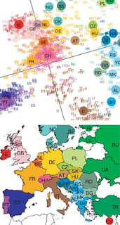 Gene map: A genetic map of Europe (above) compared with its geographic equivalent (below). The genetic map shows each of the 1,387 individuals represented by a color and a country, according to the country of origin of all four of their grandparents. The plotted points are relative to each other in terms of the similarity or dissimilarity of 200,000 single nucleotide polymorphisms--variations at single points along the genome. The larger country labels represent the center points of these populations, according to the distribution of their genetic populations. The positions of these center points appear to closely map the geographical positions of the countries involved. Credit: John Novembre
