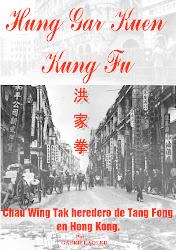 Hung Gar Kuen Kung Fu Chau Wing Tak heredero de Tang Fong en Hong Kong