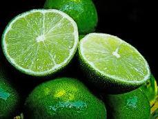 BLOGS de los autores del limón: