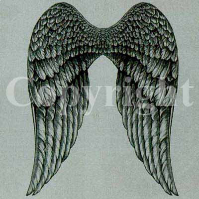 Angels Wings Tattoo on Angel Wings Tattoos   Import Tattoo