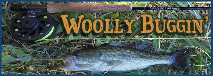 Woolly Buggin'