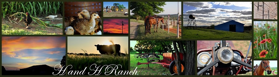 HandHRanch