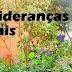 ALMA no Projeto Jovens Lideranças Ambientais Urbanas
