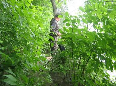 Gigel in jungla,iunie 2010 pe Sf. Gheorghe