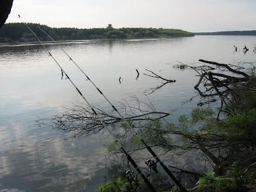 Jungla ,,un loc curat  de pescuit,,