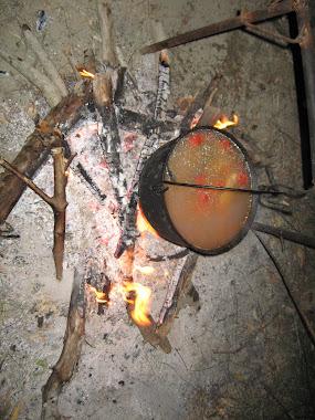 (bors de peste pe bratul Sfintu Gheorghe 28 august 2010