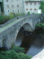 Bridge with Ducks