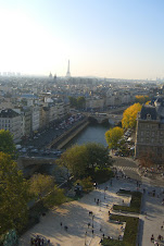 View from the top of the Notre Dame tower