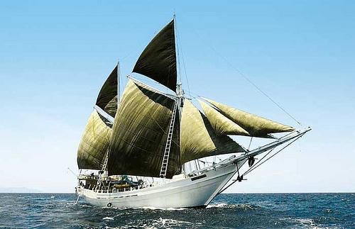 Largest Sailingp