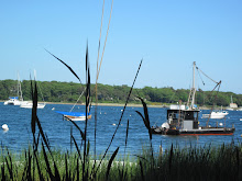 Cotuit Harbor dredger