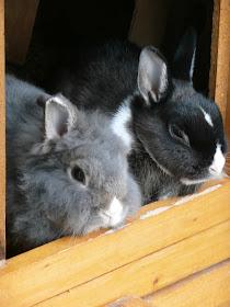 Brino und Laura