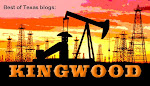 Best Of Texas Blogs: Kingwood