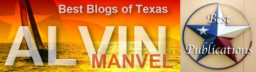 Best Of Texas Blogs: Alvin & Manvel