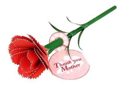 Carnation flower papercraft
