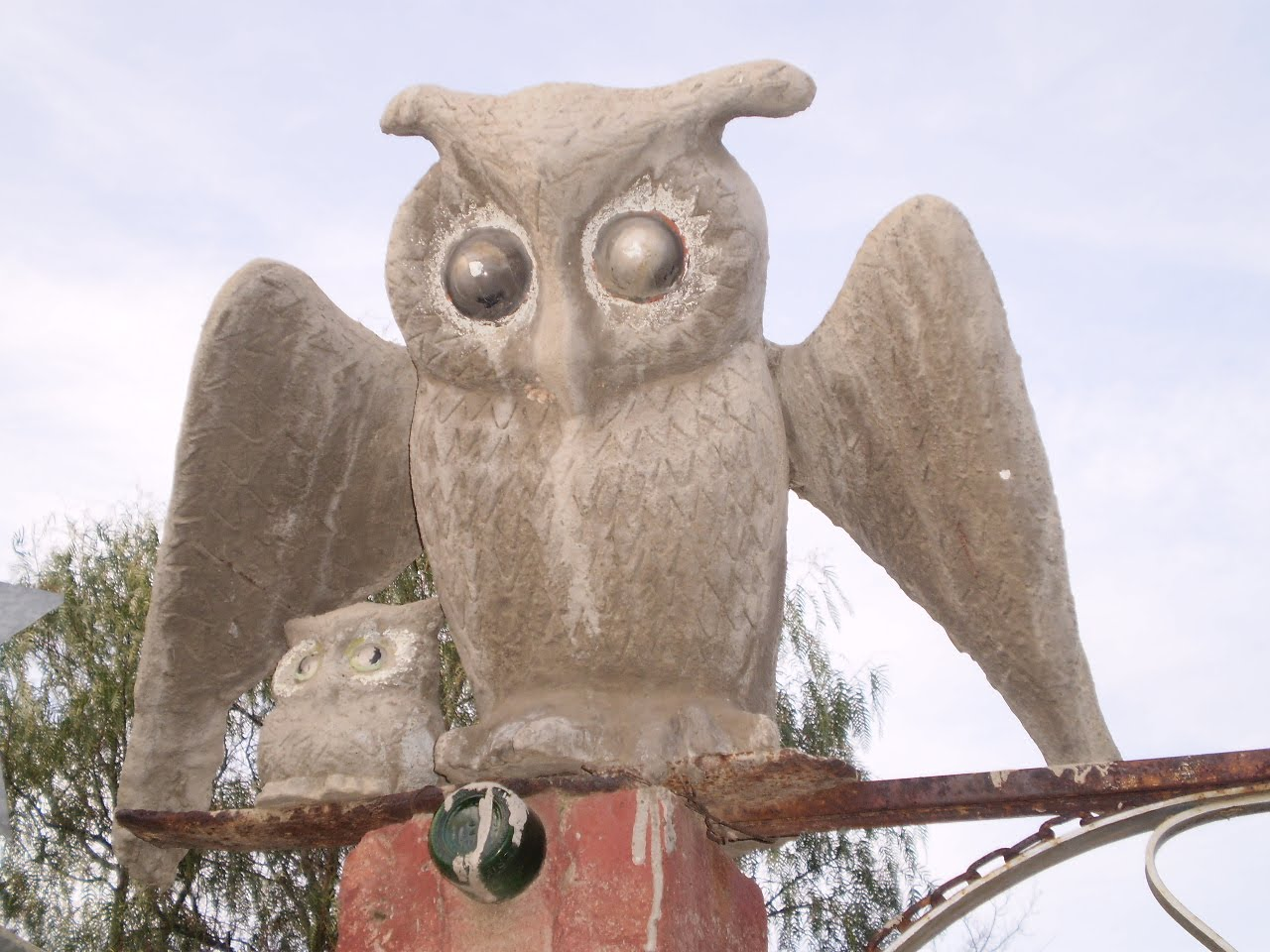 Salmagundi Who Was Helen Martins Flipper Owl Hearty Orange