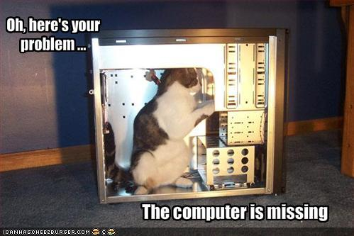 cat computer