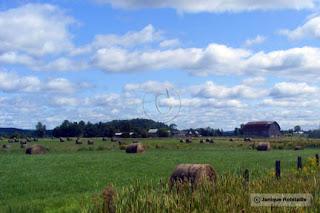 paysage nature champ foin et grange outaouais