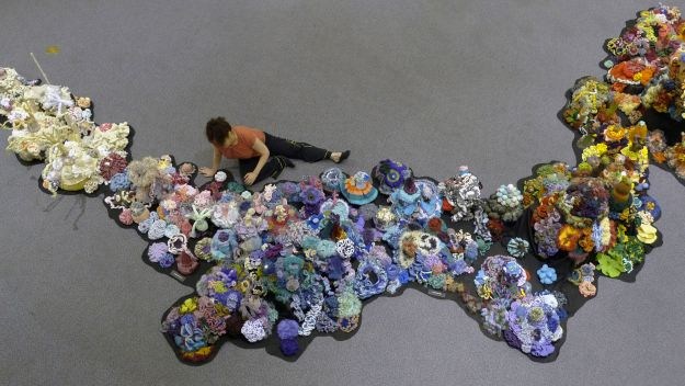 Crochet Coral Reef : ... Crochet Coral Reef: colorful yarn and complex math to save coral reefs