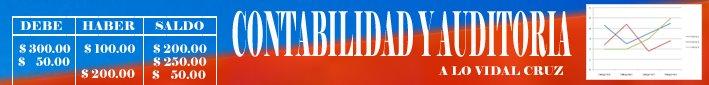 CONTABILIDAD Y AUDITORÍA