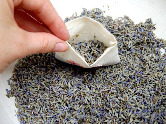 http://4.bp.blogspot.com/_CDmfA9bLtIM/SG6kW9fA3QI/AAAAAAAAAOk/fwvCSjjUkaA/s640/lavender-sachet.jpg