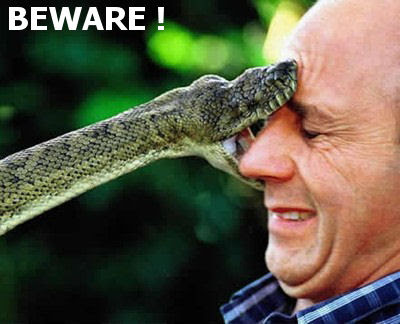 SNAKE BITE MANAGEMENT POWERPOINT LECTURES