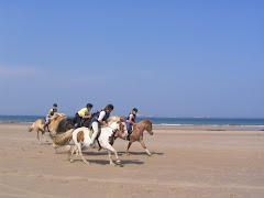Galloping on Seahouses beach