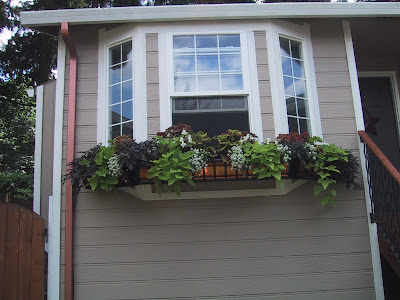 Bay window flower boxes