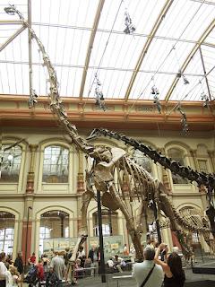 Esqueleto Brachiosaurus