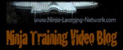 Ninjutsu Video Blog - Bujinkan Techniques - Free Ninja Training Videos - Hatsumi Blackbelt Course