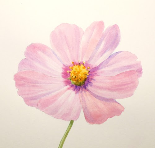 Paint draw paint learn to draw water color basics a for How to paint simple watercolor flowers