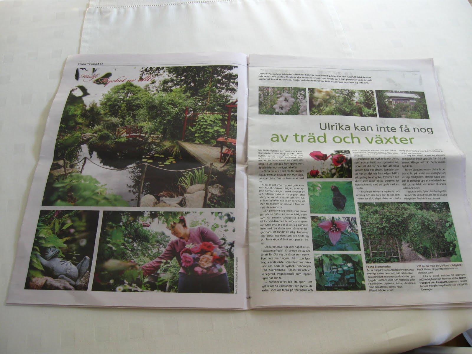 Blomsterbo: maj 2010