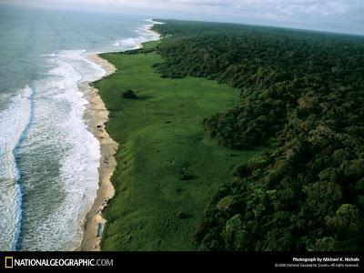 Imagen aérea del parque nacional de Loango, en Gabón